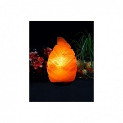 lampada di sale a Foglia