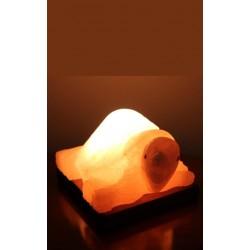 Lampada di sale a Tartaruga