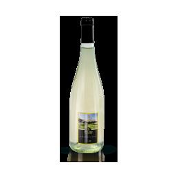 6 Bottiglie di Chardonnay
